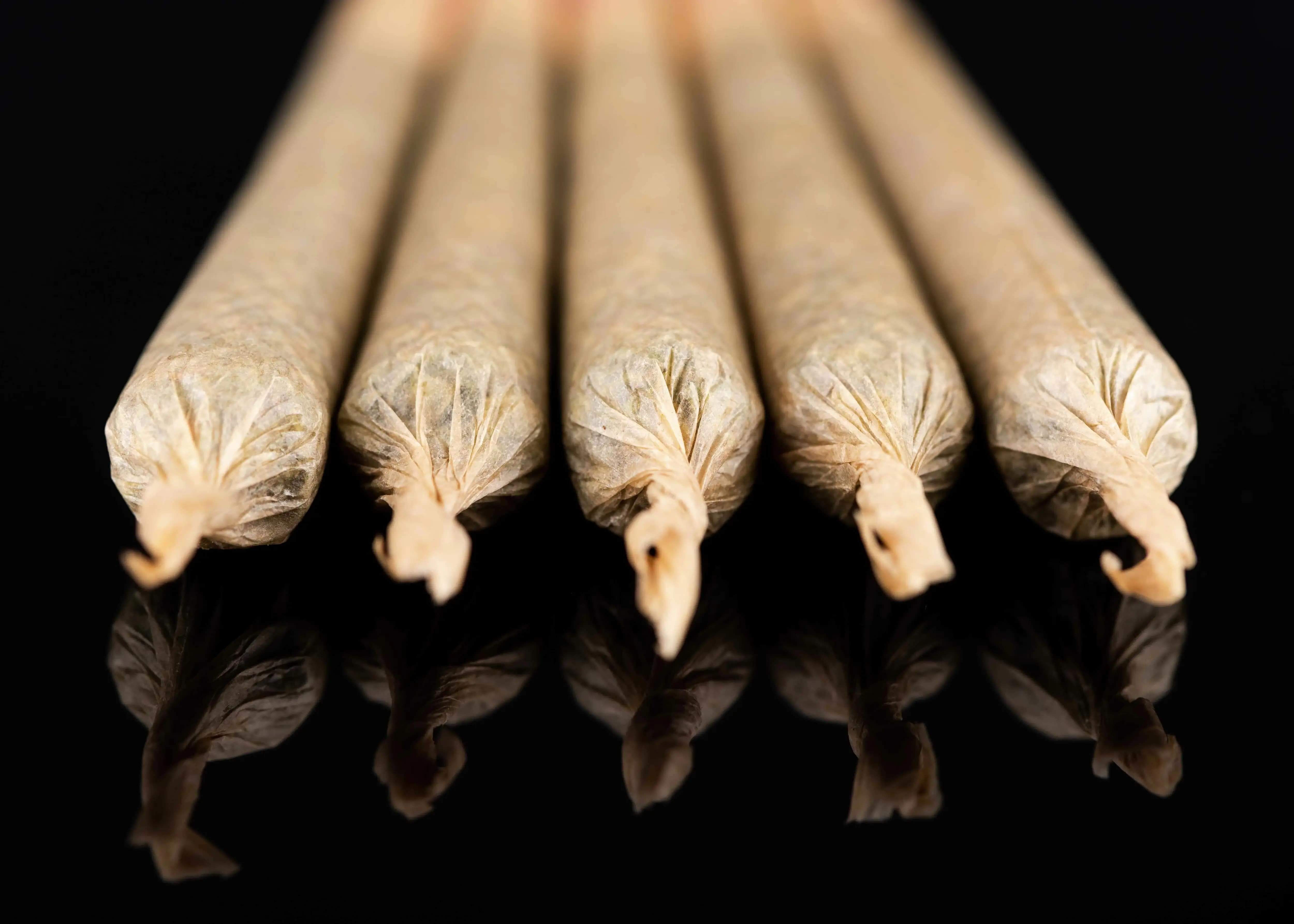 Choosing the Best Rolling Paper for Your Needs