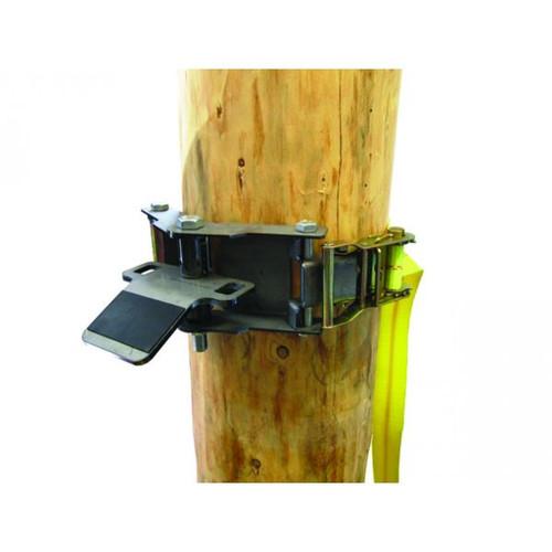 TREE ANCHOR C/W STRAP 50mm X 3M