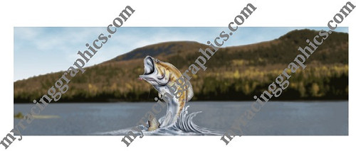 Bass Fish rear window graphic Fishing
