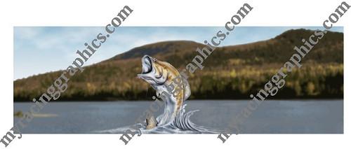 Bass Fish rear window graphic Fishing