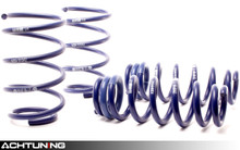 H&R 29187-5 Sport Springs BMW E90 335d Sedan