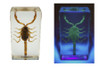 Mineral Scorpion Hunter Led UV Light