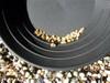 """14"""" Gold Pan Black"""