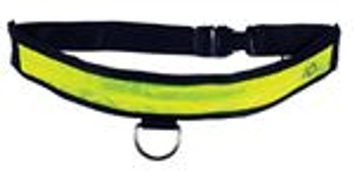 Illuminated Dog Collar (Medium 16- 22)