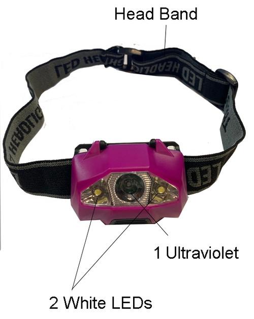 UV Headlight