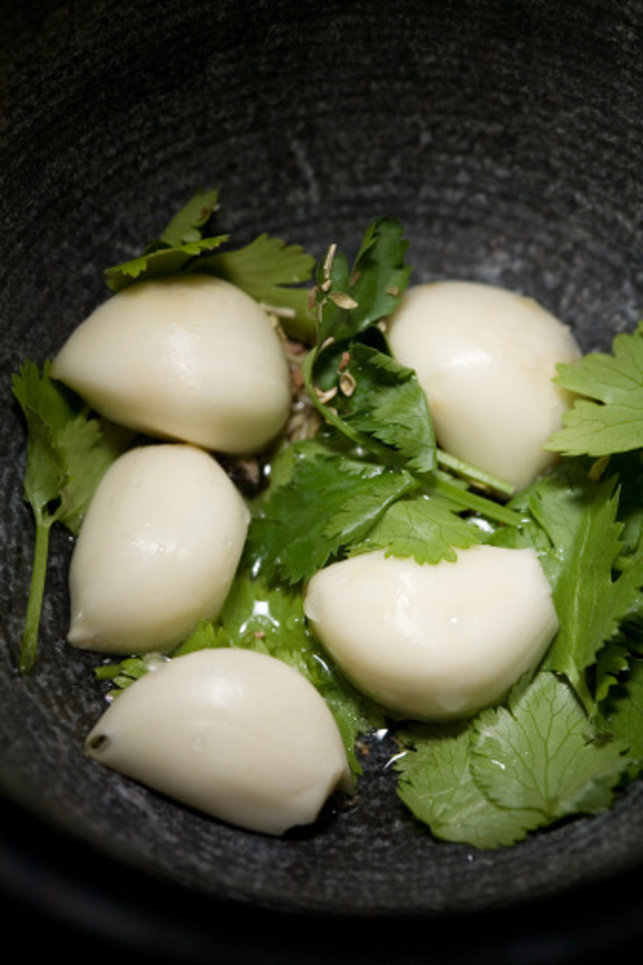 Garlic Cilantro Balsamic