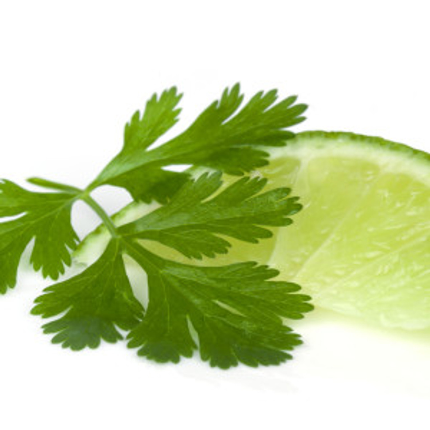Cilantro Lime Olive Oil