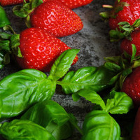 White Strawberry BASIL Balsamic