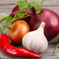 Zesty Onion **NEW** EVOO