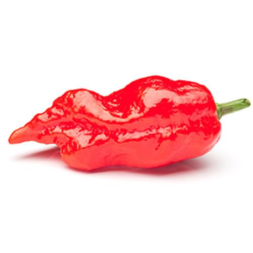 Ghost Pepper Balsamic BBQ