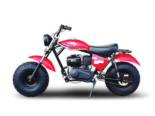 TrailMaster MB200-2 Minibike