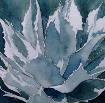 blue-agave-ii4.jpg