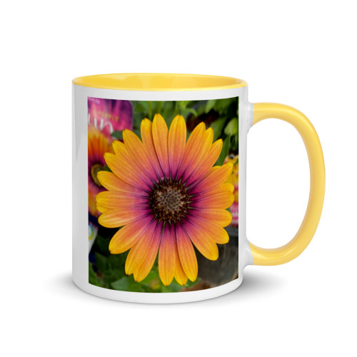 Osteospermum Purple Sun Daisy Coffee Mug. Unique Design!