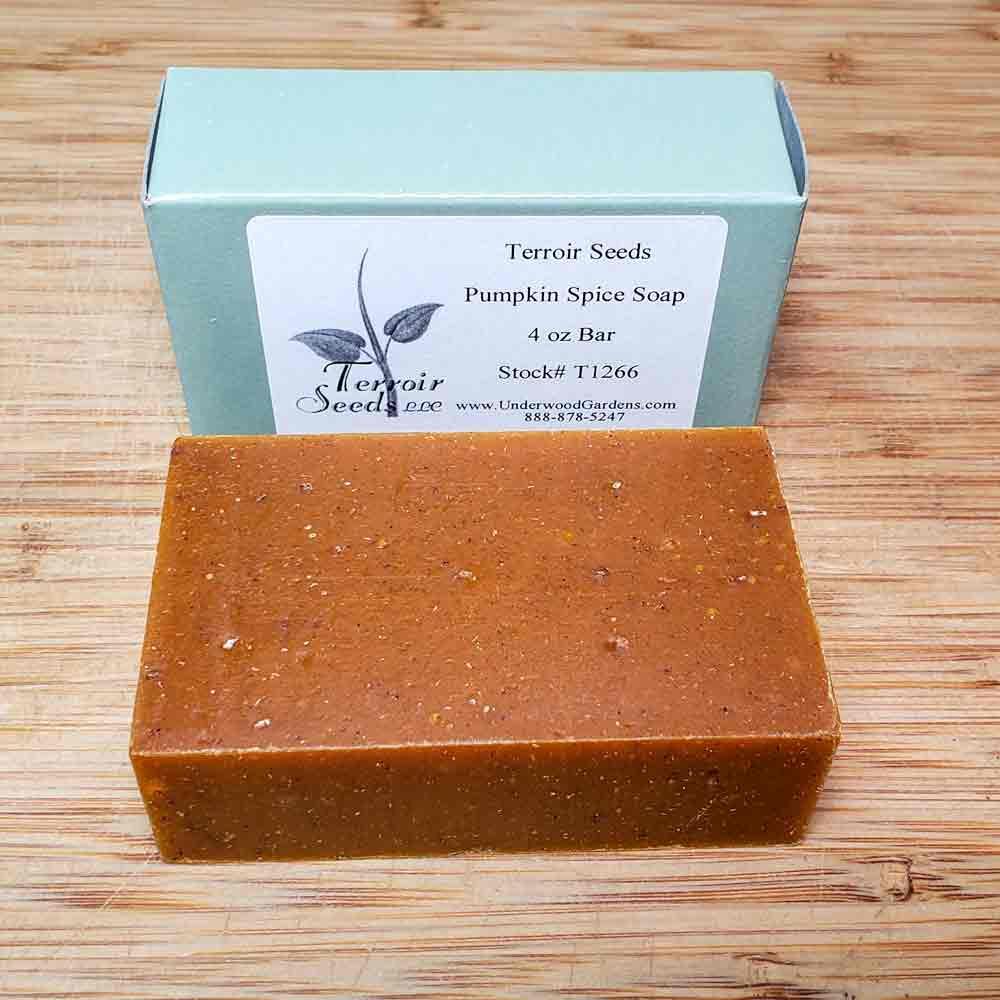 Organic Handmade Pumpkin Spice Soap