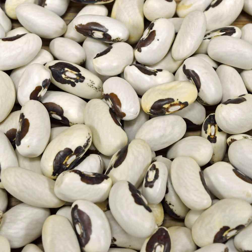 Golden Wax Bean Seeds - (Phaseolus vulgaris)