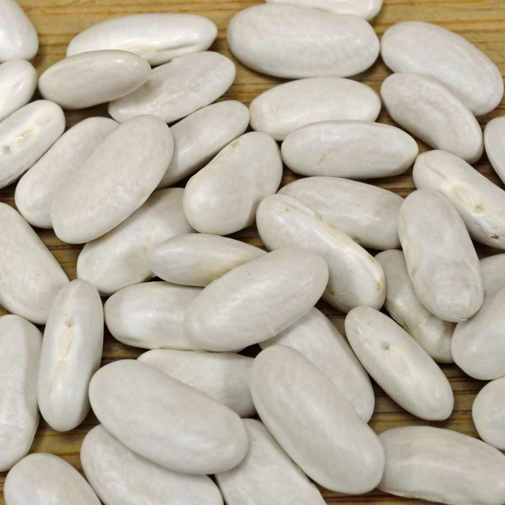 Lazy Housewife Pole Bean Seeds - (Phaseolus vulgaris)