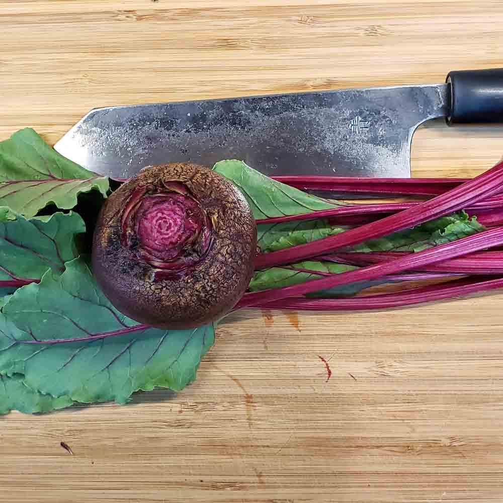 Sliced Ruby Queen Beet and Leaves - (Beta vulgaris)