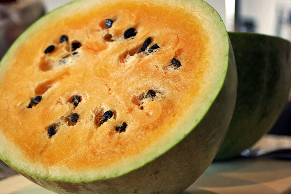 Orangeglo Watermelon - (Citrullus lanatus)