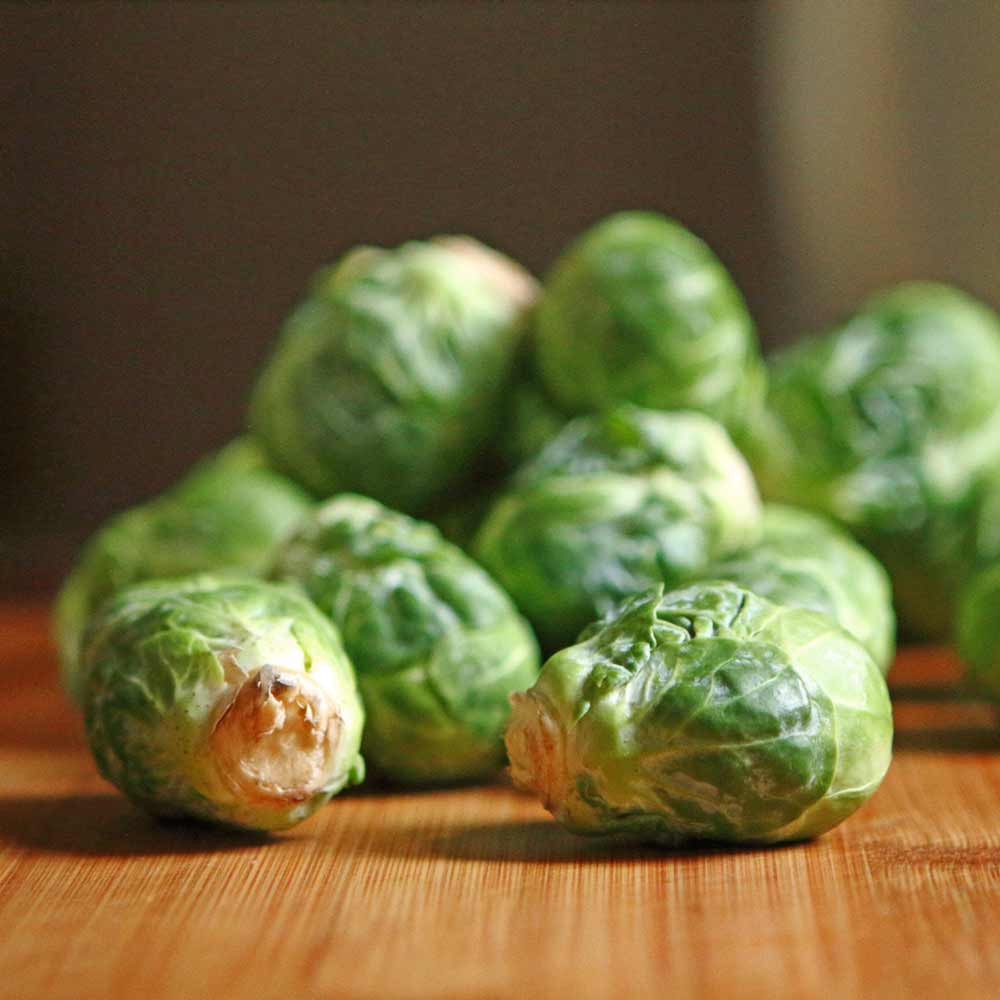Catskill Brussels Sprout - (Brassica oleracea)