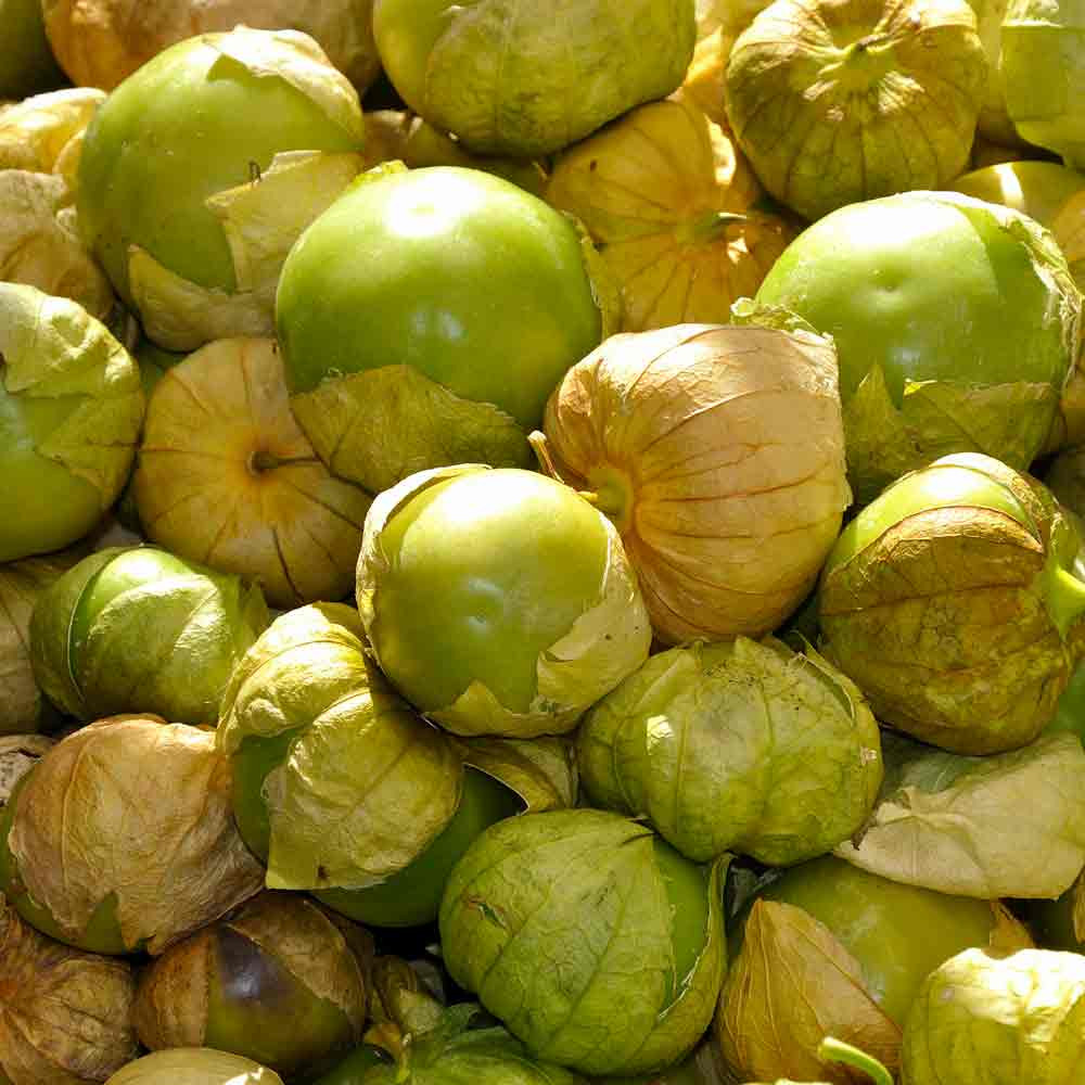 Verde Tomatillos - (Physalis ixocarpa)