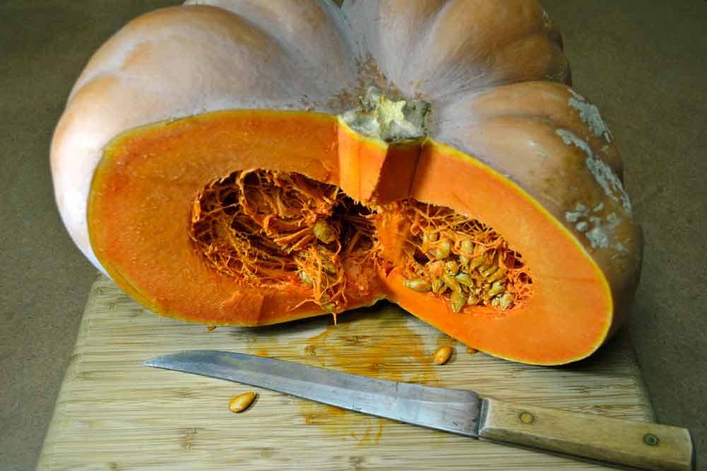 Musquée de Provence/Fairy Tale Pumpkin cut open - (Cucurbita moschata)
