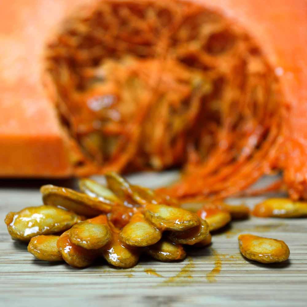 Fresh Musquée de Provence/Fairy Tale Pumpkin Seeds - (Cucurbita moschata)