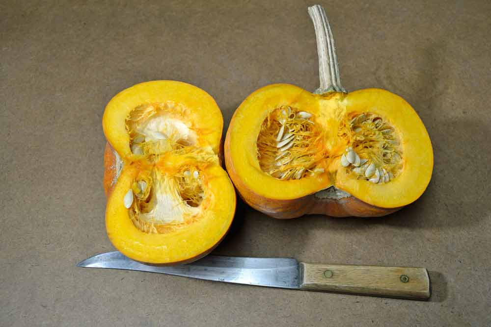 New England Sugar Pie Pumpkin sliced open  - (Cucurbita pepo)