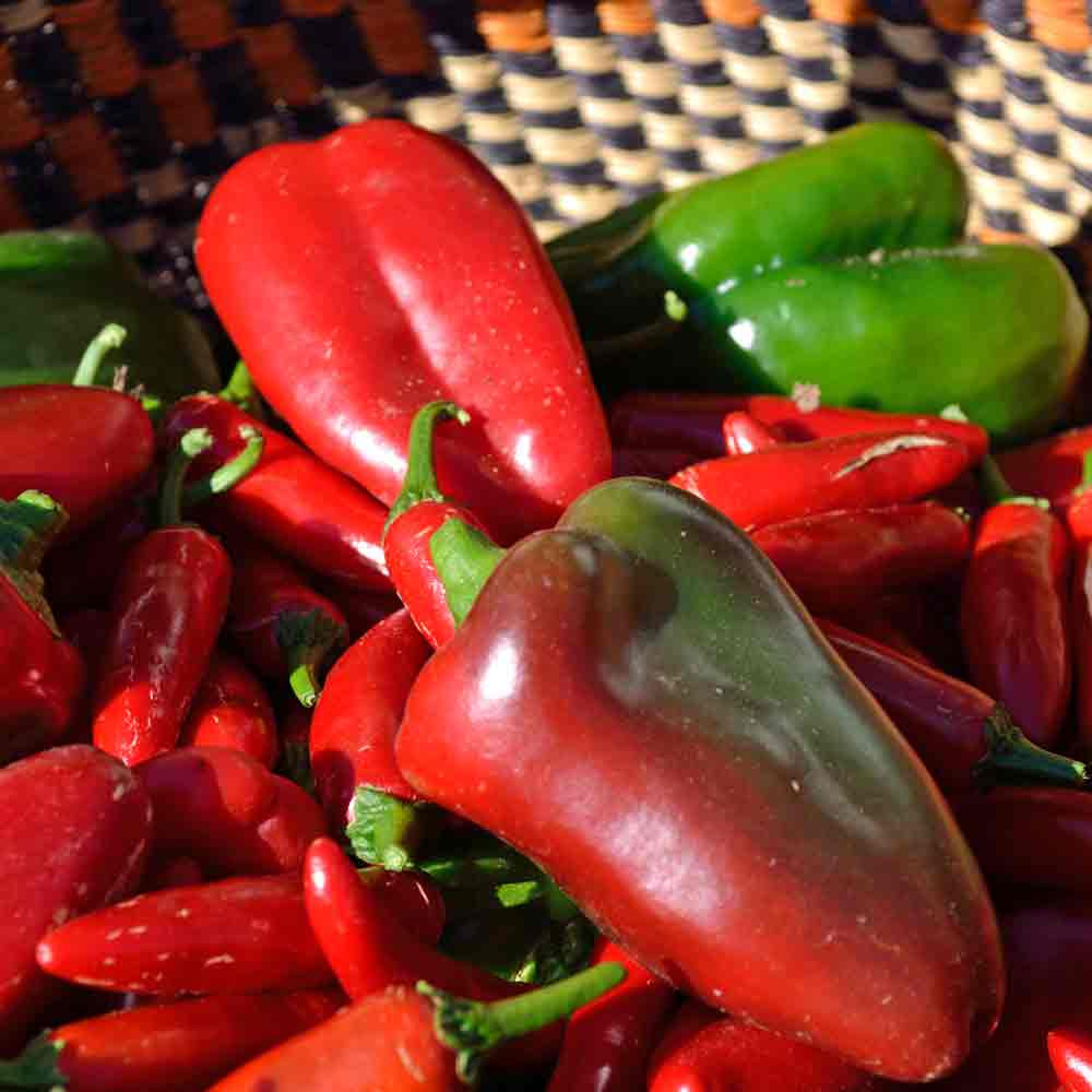 Fresh Picked Lipstick Sweet Peppers - (Capsicum annuum)