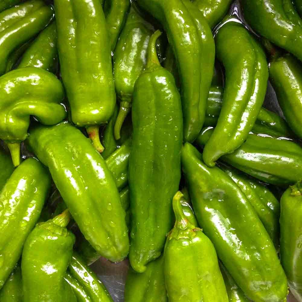 Green Anaheim Peppers - (Capsicum annuum)