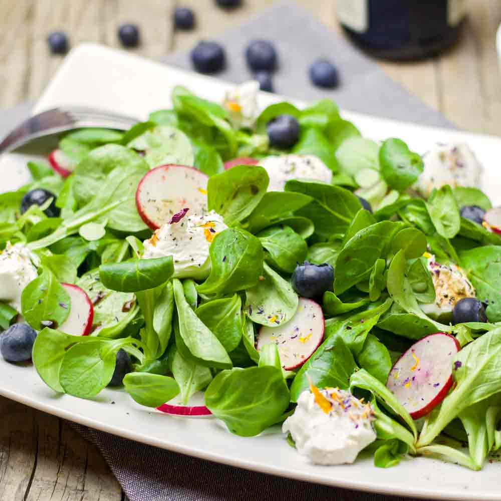 Corn Salad/Lambs Lettuce/Mache in a salad - (Valerianella locusta)