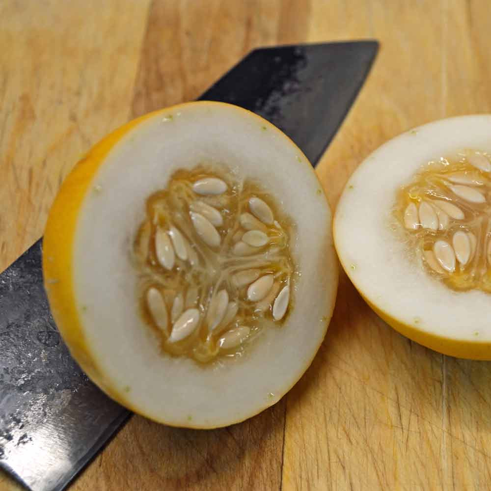 Sliced Vine Peach / Mango Melon fruit - (Cucumis melo var.chito)