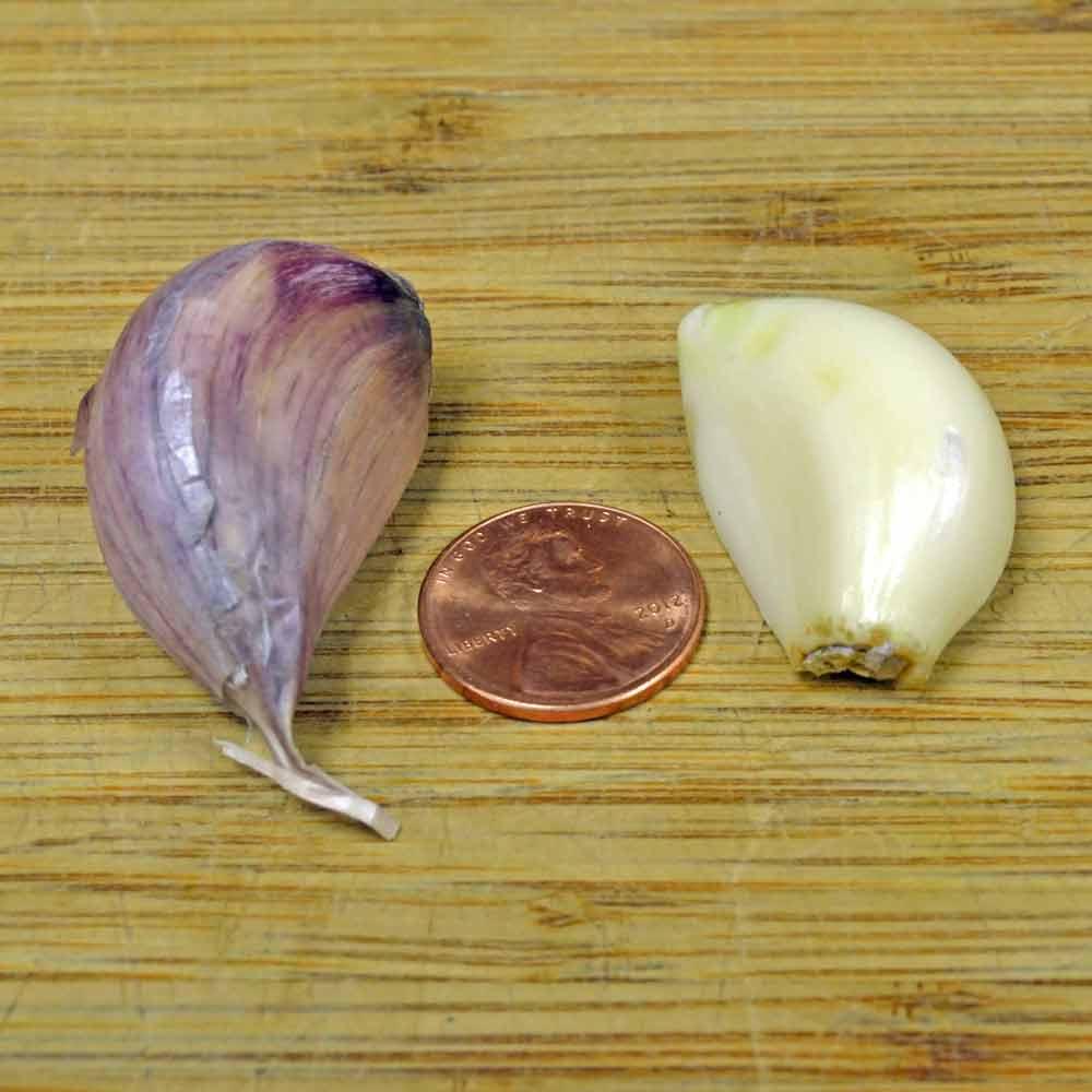 Organic Chesnok Red Garlic cloves - (Allium sativum)