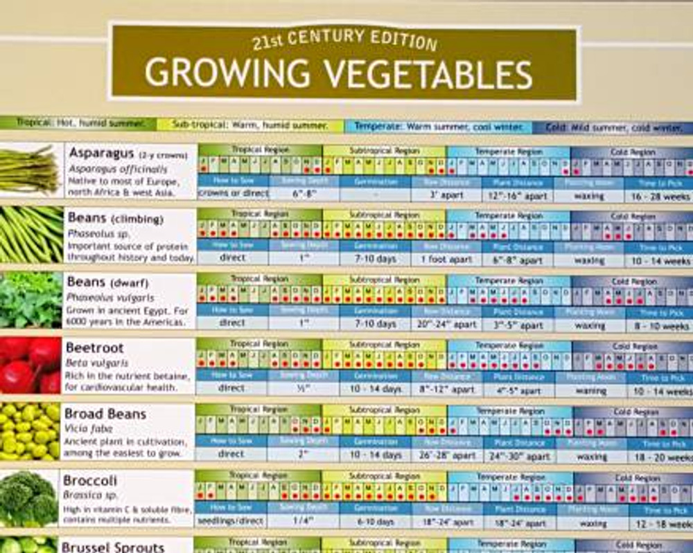 Growing Vegetables Planting Chart