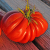 Zapotec Ribbed Tomato - (Lycopersicon lycopersicum)