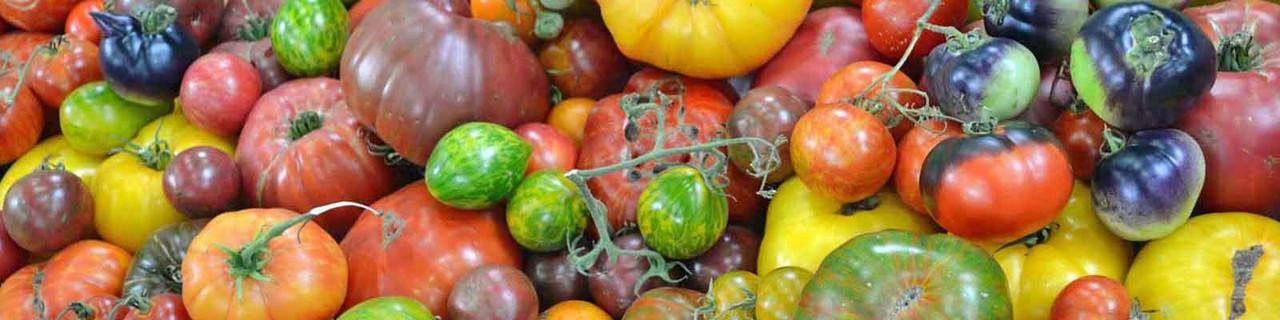 Tomato - Pear & Plum