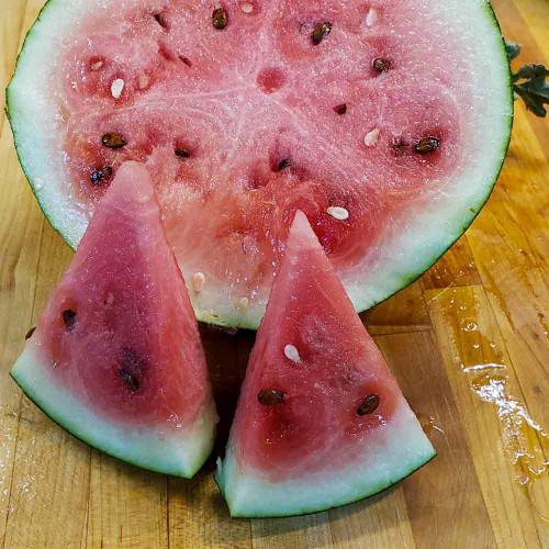 Katanya Watermelon Slices - (Citrullus lanatus) (V1191)