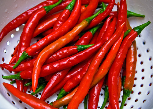 Cayenne Long Slim Pepper - (Capsicum annuum)