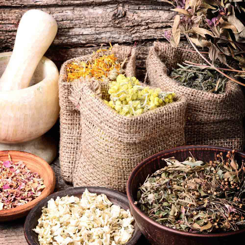 Aromatherapy Garden Heirloom Seed Collection
