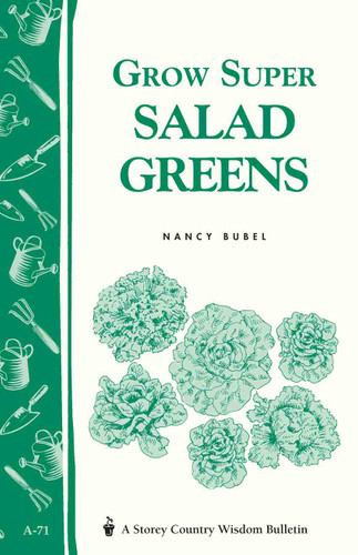 Grow Super Salad Greens by Nancy Bubel