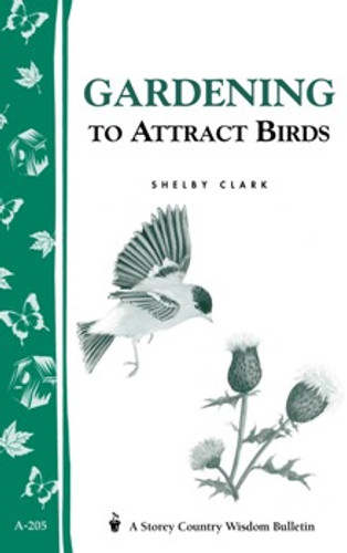 Gardening to Attract Birds by Shelby Clark