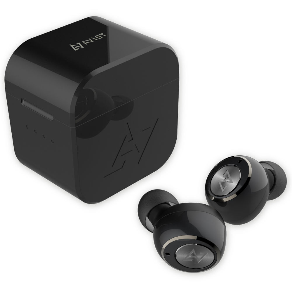 AVIOT True Wireless Earbuds TE-D01g With Charging Case (Black)