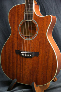 CRAFTER TE-6 ACOUSTIC GUITAR