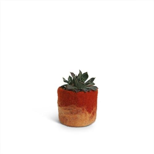Aveva Design Wool Flower Pot OMBRE small/rust