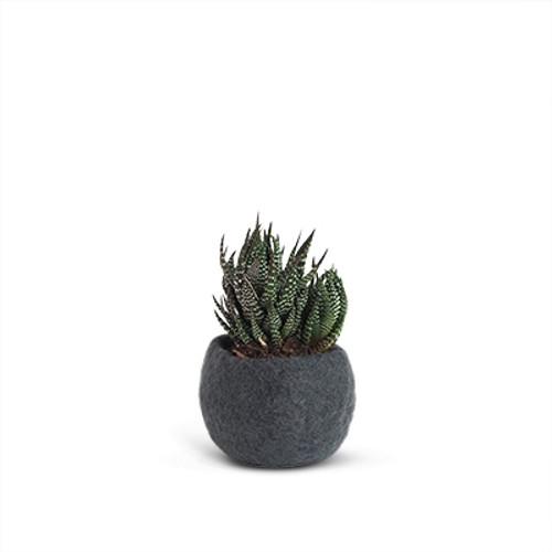 Aveva Design Wool Flower Pot ROUND small/dark grey