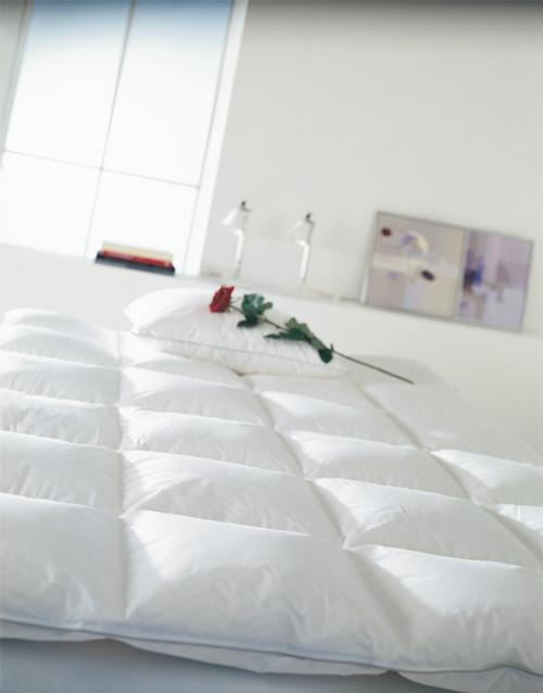 Scandinavian Goose Down Comforter All Year CUIN 800