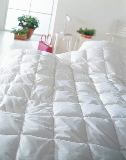 Scandinavian Goose Down Comforter LIGHTWEIGHT / SUMMER CUIN 800