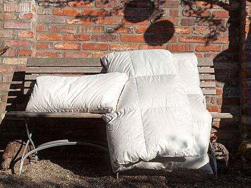 Organic German Goose Down Comforter ALL YEAR CUIN 750