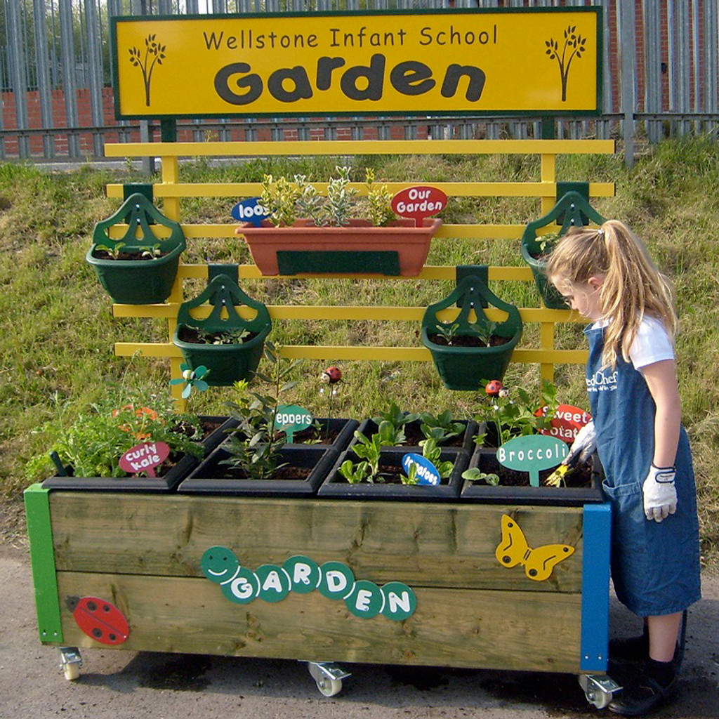Complete Mini Garden