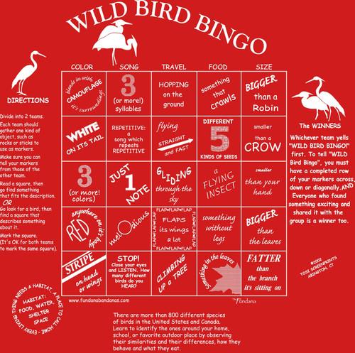 Wild Bird Bingo Fundana