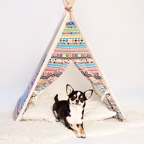 Teepee Tent (Indian)